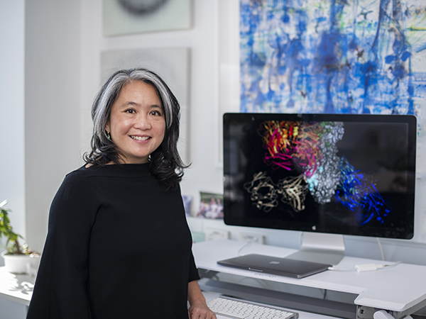 Associate Professor Wai-Hong Tham is developing antibody cocktails to fight COVID-19